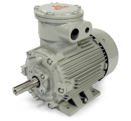 CMG PPD Series Electric Motor